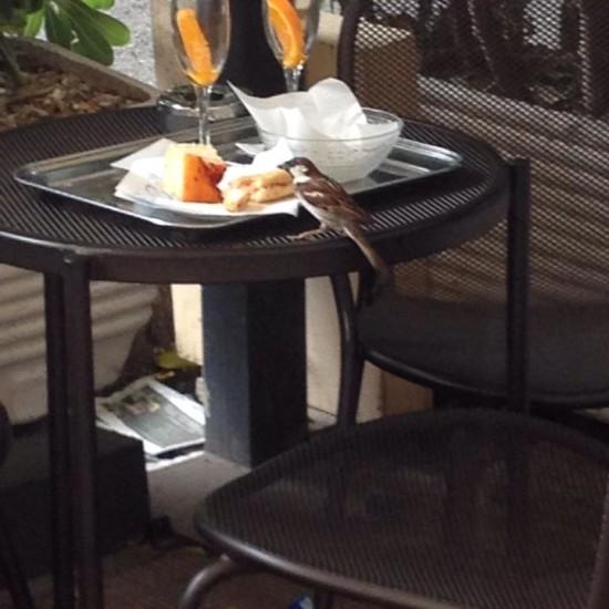 Anche lui sceglie caffe' Truzzi x fare l'aperitivo!!